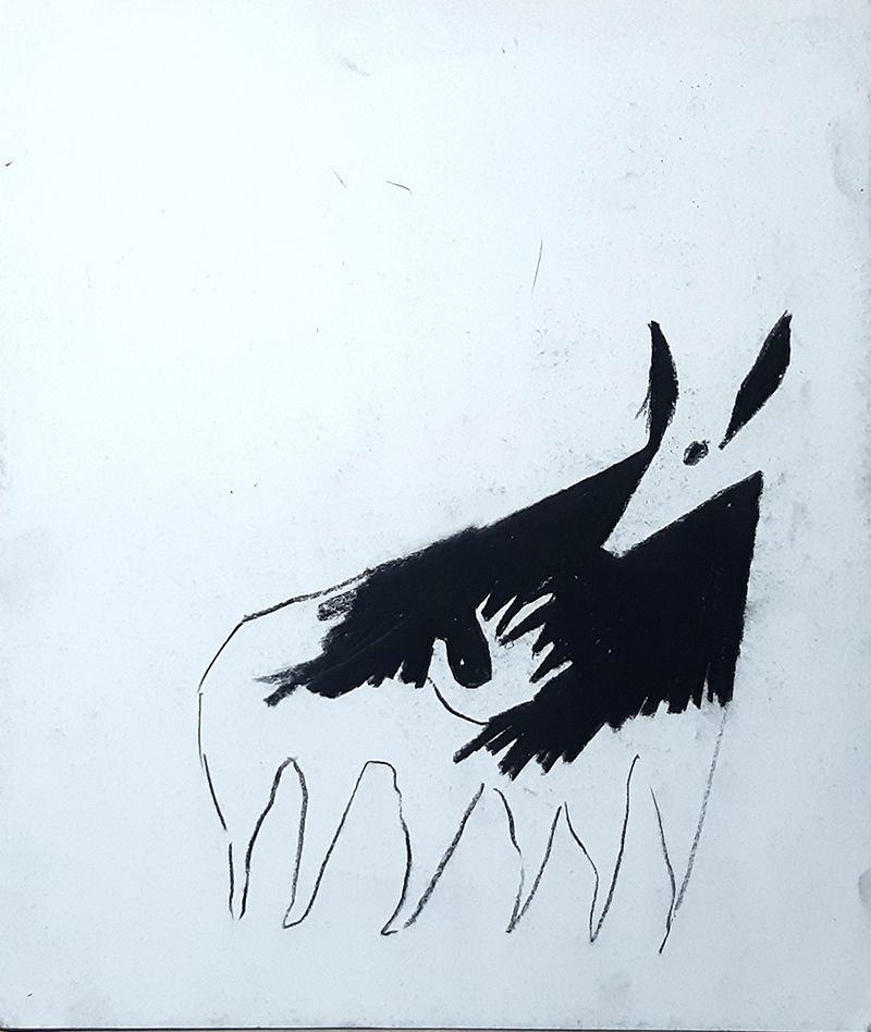 Zorro (serie Fictogramas)