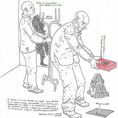 Boceto 2 preparatorio del proyecto morfogénesis de un animal
