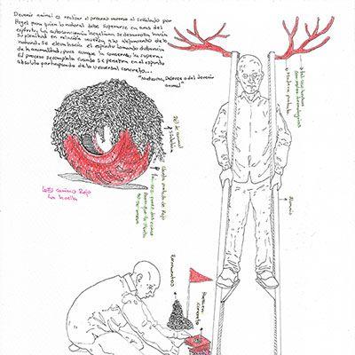 Boceto 1 preparatorio del proyecto morfogénesis de un animal